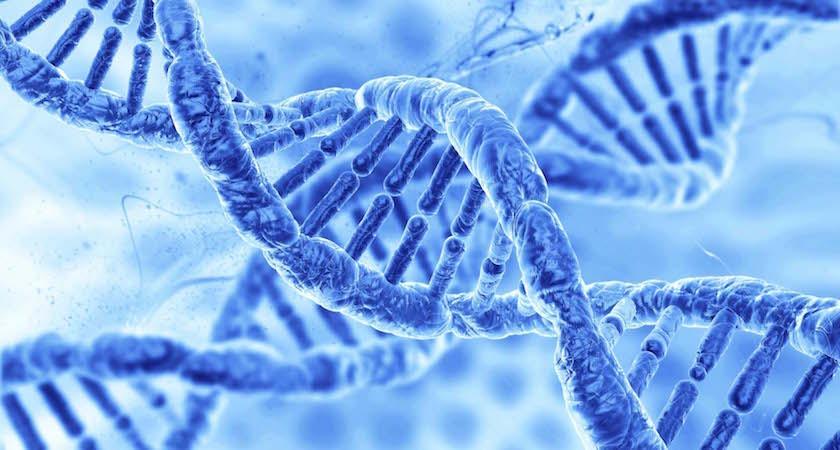 Understand Your Genetics – Bê: Bien-être